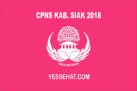 CPNS Kabupaten Siak 2018