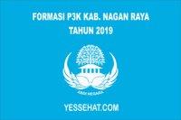 Formasi PPPK / P3K Nagan Raya 2019