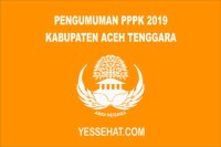 Pengumuman PPPK / P3K Aceh Tenggara 2019