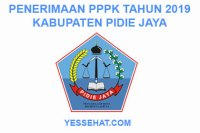 Pendaftaran P3K Pidie Jaya 2019