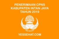 Penerimaan CPNS Kabupaten Intan Jaya 2019