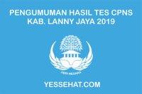 Pengumuman Kelulusan Akhir Tes CPNS Lanny Jaya 2019