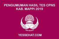 Pengumuman Kelulusan Akhir Tes CPNS Mappi 2019