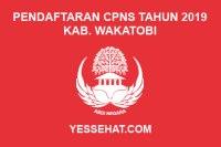 Pendaftaran CPNS Kabupaten Wakatobi Tahun 2019
