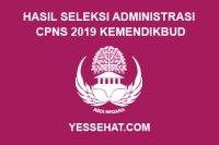 Hasil Seleksi Administrasi CPNS Kemendikbud Tahun 2019