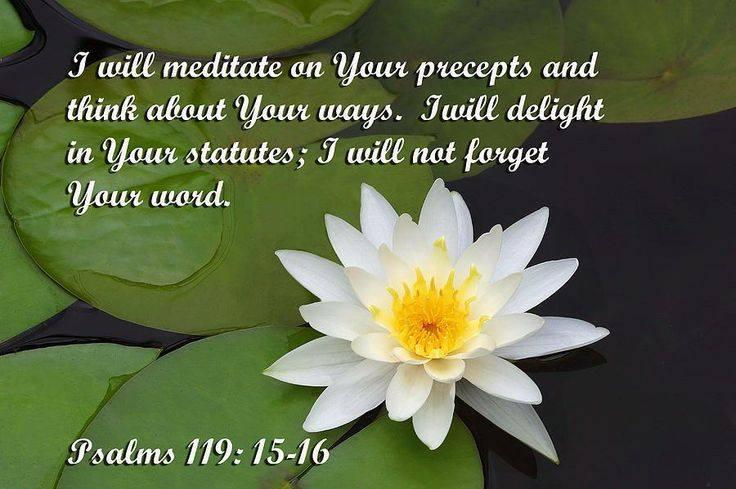 """I will meditate in thy precepts."" Psalm 119:15"