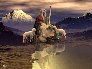 """""""He shall gather the lambs with his arm."""" Isaiah 40:11"""