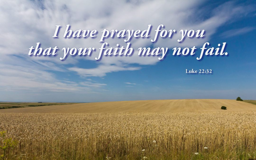 """""""I have prayed for thee."""" Luke 22:32"""