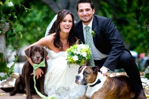 Perros en bodas posando con novios