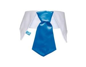 Cuello con corbata para perros color celeste
