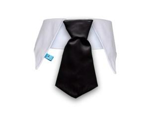 Cuello con corbata para perros color negro
