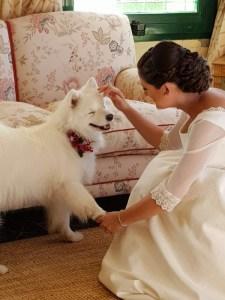 Boda novia Vero con perro Nala