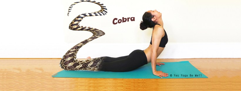 How to do crobra prose yes yoga be well