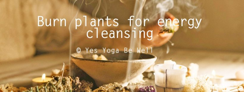 burn plants for energy cleansing