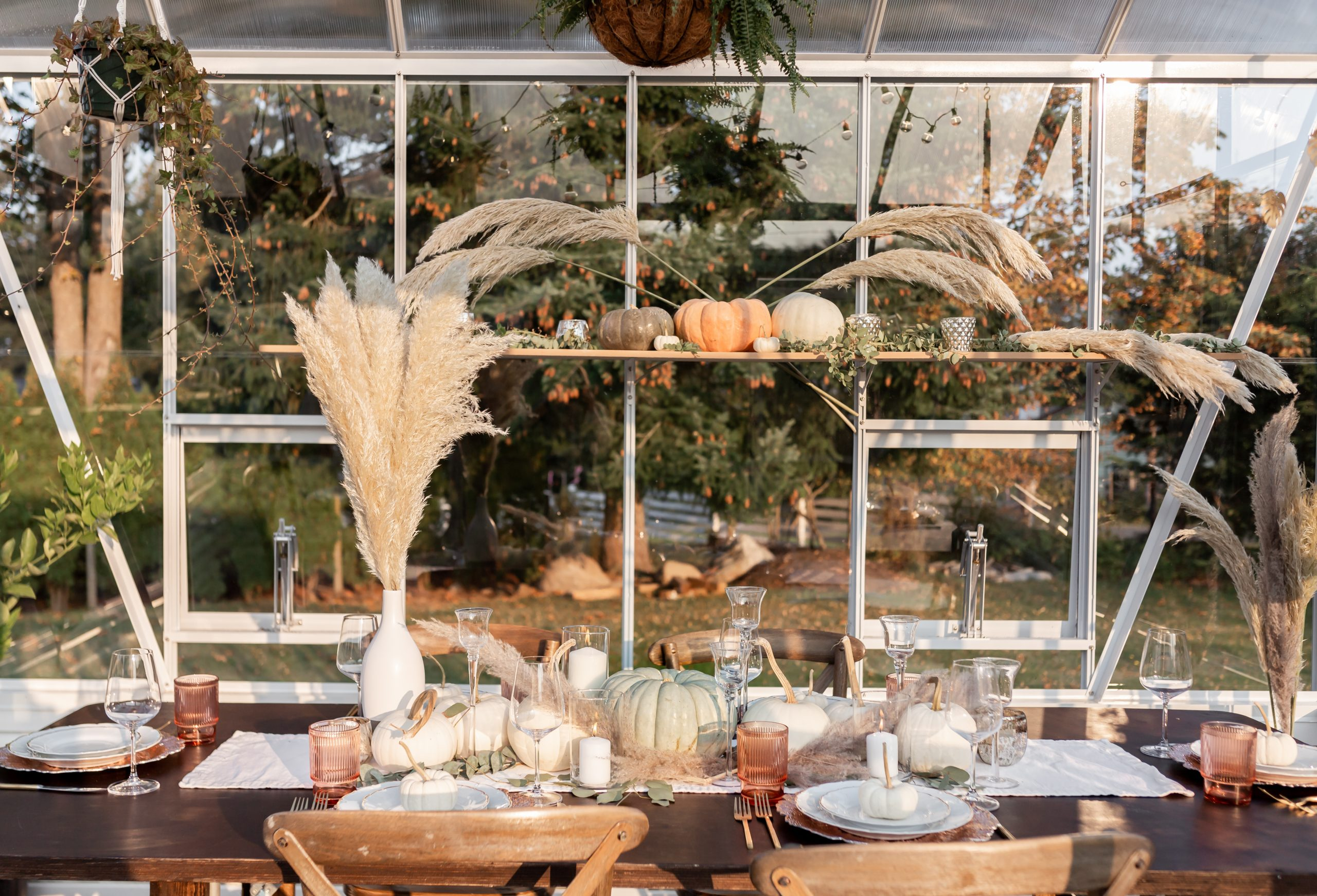 beautiful fall harvest greenhouse dinner