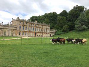 Dyrham Park a 17th Century Mansion near Bath