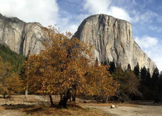 Ribbon_ElCapitan_Yosemite_DeGrazio