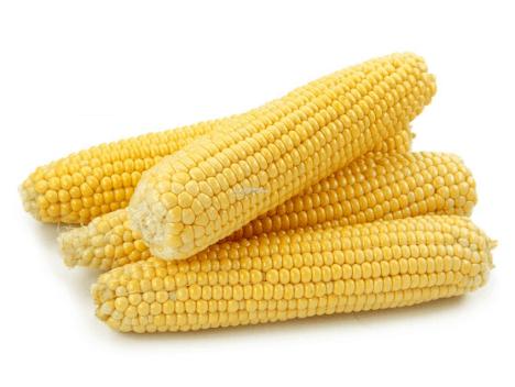 Corn on The Cob Calories