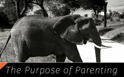 The Purpose of Parenting, Part 3