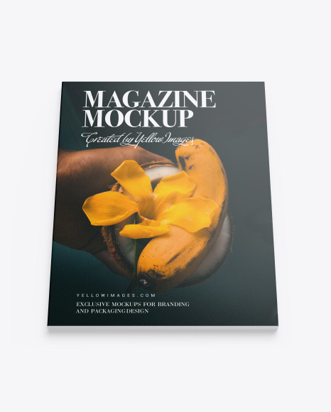 Download Free Zine Mockup Yellowimages