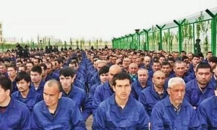 """""""维吾尔人权项目""""发布新的人权报告"""