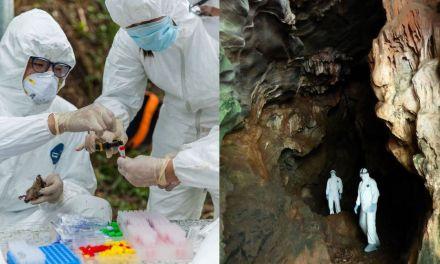 【新闻周刊】与中国的说法相反,很可能是人类而非动物把新冠病毒带到武汉
