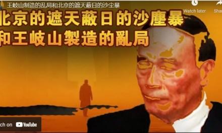 张杰:王岐山的乱局