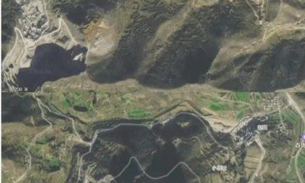 王维洛:不可信的中国森林覆盖率
