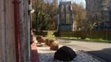 修道院遺址-哈次山上的瓦爾肯里德-7