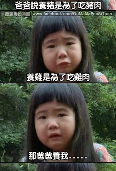 养猪吃猪,养鸡吃鸡,养逸宁…..
