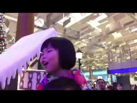 Christmas Show at Changi Airport