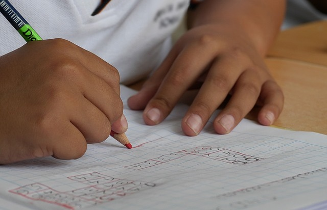 生徒 勉強 鉛筆 ノート