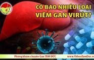 Có bao nhiêu loại viêm gan virus ?
