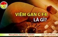 Viêm gan C f4 là gì?