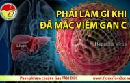 Phải làm gì khi đã mắc viêm gan C ?