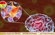 Virus nCoV gây tổn thương chưa từng thấy cho tim