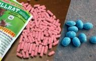 Cảnh báo ngộ độc thuốc diệt chuột kiểu mới màu xanh, màu hồng giống kẹo