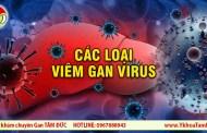 Viêm gan virus có mấy loại ? Sự khác nhau giữa các loại viêm gan virus