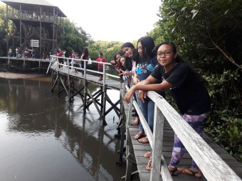 YKPA girls on mangrove education outing