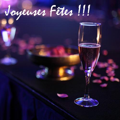 ~ Joyeuses Fêtes !!! ~