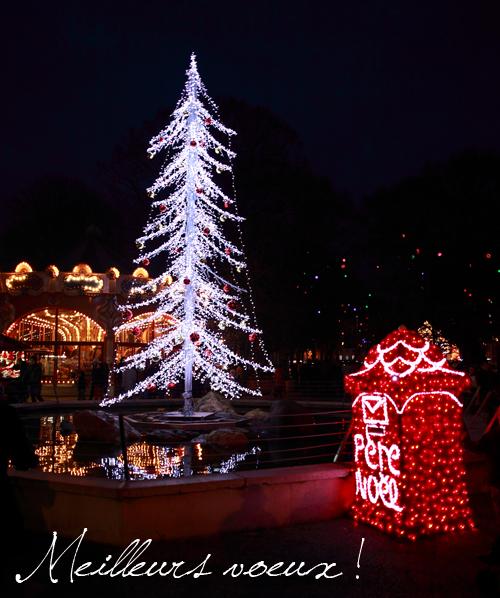 ~ Joyeux Noël !!! ~