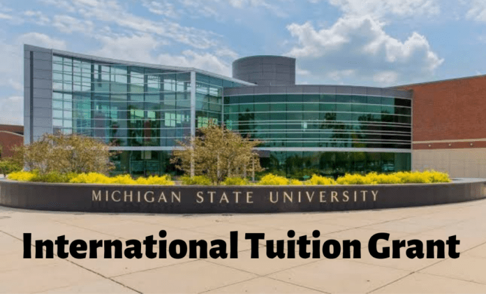 Image result for International tuition Grant at Michigan State University, USA