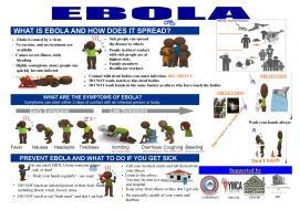 ebola YL