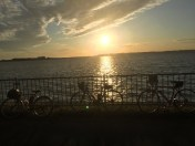 10月クラブラン 浜名湖一周と華の舞酒造