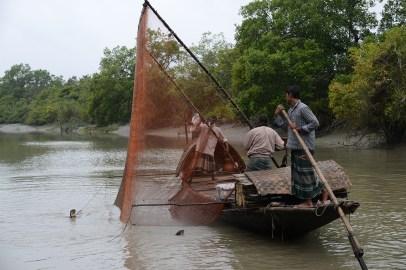 カワウソを使った漁