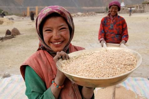 麦をふるいにかけているピドモの少女