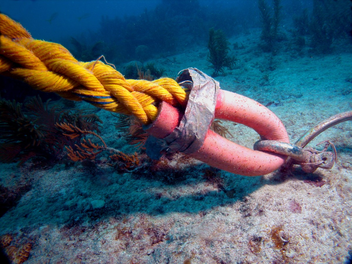 sombrero-reef.jpg