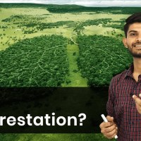 Why Deforestation? | Forest Society and Colonialism | History | Class 9th | In Hindi | Magnet Brains