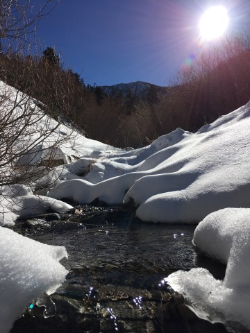 Forsee Creek, San Gorgonio Wilderness, CA