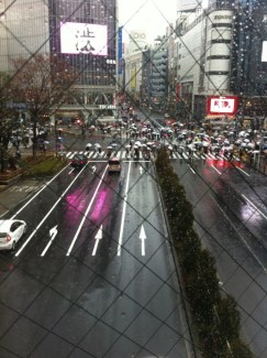 Le fameux croisement de Shibuya
